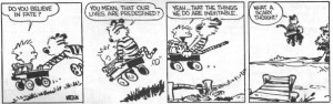 Calvin and Hobbes on Predestination