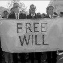 Free Will Calvinist