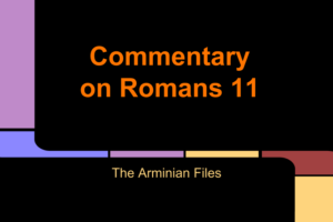 commentary-romans-11